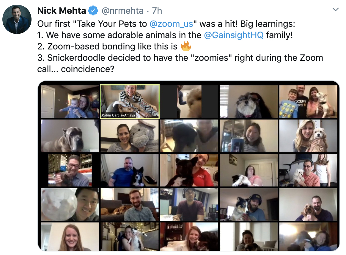 Bring Your Pets to Zoom Day