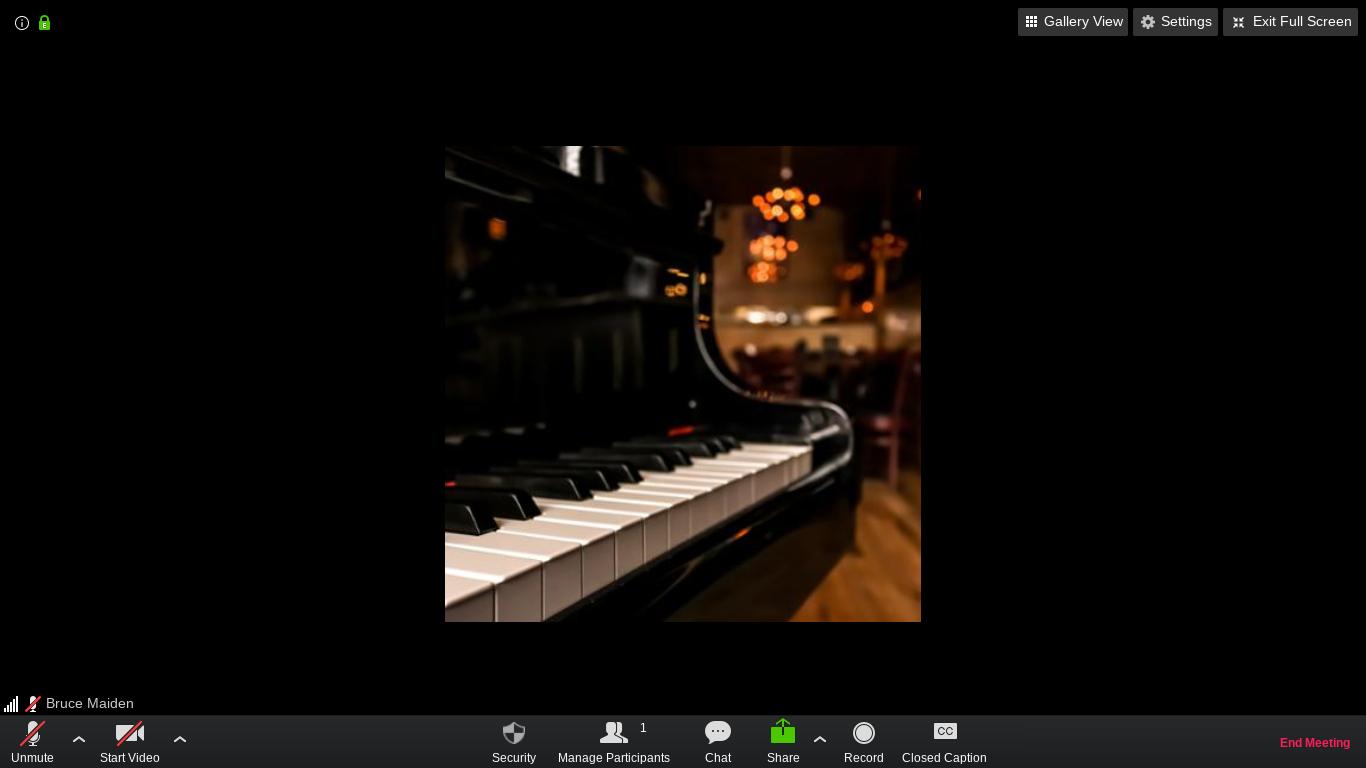 Zoom on a Chromebook - full screen