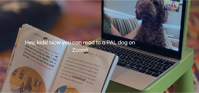 Read to a PAL Dog